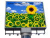 Large Size Screen Outdoor P16 Advertising Video LED Display Board
