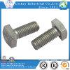 Stainless Steel, Alloy Steel, Steel, Brass Square Head Bolt