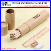 12PCS Promotion 7 Inch Colour Wood Pencil Set with Ruler, Sharpener, Eraser in Paper Tube (EP-P9077)