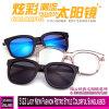 5123 Lady New Fashion Retro Style Colorful Sunglasses