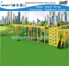 Pipeline Series Outdoor Toys Commercial Playground Equipment Hf-18302