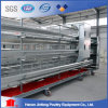 a and H Type Battery Poultry Cages for Longer Use