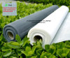 Anti-Fly Screens and Anti-Mosquito Screens Mesh with SGS Certifications