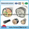 Huzhou Permanent Brand 1kv PVC Insulated Copper Conductor 2 Core 3 Core 16mm 4 Core Armoured Cable Price