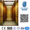 Residence Home Elevator with AC Vvvf Gearless Drive (RLS-256)