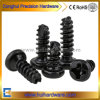 Round/Pan Head Flat End Tapping Screw/Electronic Screw