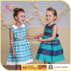 Young Lady Dress, Casual Cotton Dress for Girls (2812 6056#)