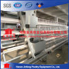 2017 Best Design Poultry Equipment Automatic Layer Chicken Cage