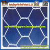 Stainless Steel Chicken Hexagonal Wire Mesh From Anping