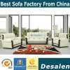 Factory Wholesale Price Leather Office Sofa (A06)