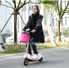 Cheap Folding Electric Bike for Adult