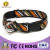 Dog Collars with Strip Webbing (NCSD-01)