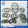SKF NSK NTN Timken Koyo Thrust Ball Bearing