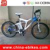Long Range Electric Bike with 120km Autonomy (JSE76)