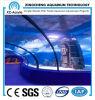 Clear Marine Acrylic Tunnel Oceanarium