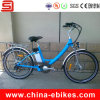 Electric Bike with Pas/Pedelec (JSE32-S6)