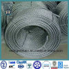 Hot DIP Galvanized Steel Wire Rope