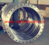 Thread Flanges, OEM Wind Power Flange, Carbon Steel Flange