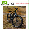 48V11.6ah (HL) Samsung Cell 29e Battery Ebike 48V 350W Fat Tyre Electric Bike for Sale