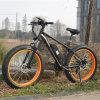 Best Quality Fat Tire E Bike (RSEB-508)