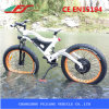 Chinese Manufacturer 48V Fat Tire Mountain Ebike