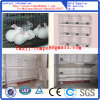 Rabbit Cages Widely Exported to Africa