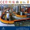 Automatic Orange Juice Making Machine