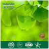 Naturalin Ginkgo Biloba Extract