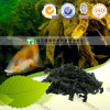 Nocturnal Emission Natural Herbal Medicine Kelp