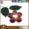 Garment Best Price Free Sample Resin Button