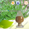 ISO BV SGS Kosar Certificated Manufacturer Horsetail Extract