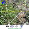 Sns Wire Rope / Spider Mesh (HPZS-1009)