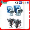 Automatic Chemical Swimming Pool Chlorine Dosing Pump, Swimming Pool Chlorine Feeder