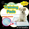 Pet PEE Pads for Housetraining Puppies