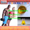 Muscle Building Steroid Powder Test E Testosterone Enanthate CAS 315-37-7