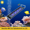 WiFi Dimmable 165W Full Spectrum CREE LED Aquarium Light for Coral