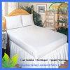 Anti Bed Bug Waterproof Zippered Mattress Encasement