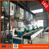 Biomass Pellet Mill Wood/Sawdust/Straw/Rice Husk/Pasture Pellet Machine