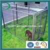 Dog Fence, Dog Cage, Dog Run, Dog Crate, Dog House