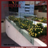 Modern Outdoor Glass Steel Balustrade (DMS-B21552)