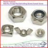 Carbon Stainless Steel Hex Head Nut, Square Nut, Wing Nut, All Kinds of Galvanizing Nut