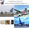 Logistic Service Freight Forwarder Air Freight From China to Worldwide