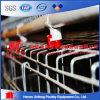 Nigeria Hot Sale Electro Galvanized Chicken Cage for Polutry Farms