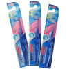 Adult Toothbrush with PS Handle Hot Saling in Brazil