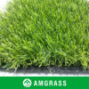 for Garden 25mm Height, for Color, Soft Feeling Artificial Grass