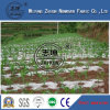 PP Nonwoven Fabric with High Quality Using in Agriculture