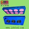 144*3W LED Grow Light for Sun Flower- Green House, Farm & Flower