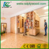WBP Glue OSB Board for Furniture and Construction in Central Asia