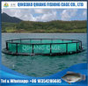 Tilapia Farm Net Cage, Aquaculture Fish Cages with Long Service Time
