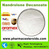 Professional Bodybuilding Powder Nandrolone Decanoate (Deca) /360-70-3